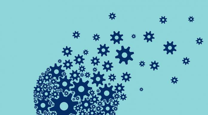 Brain and dementia